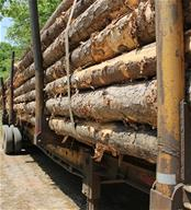 Stack of lumber on truck